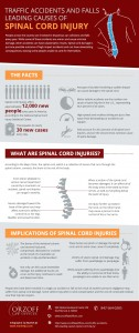 Traffic Accidents and Falls Leading Cause of Spinal Cord Injury